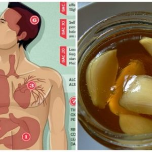 Boost Your Immunity with This DIY Remedy and Protect Your Body from Toxins