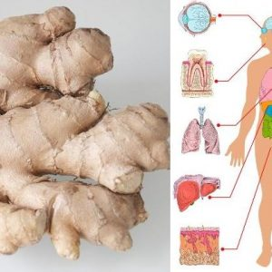 8 Proven Health Benefits of Ginger