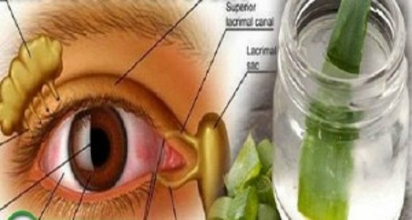 how to make your eyesight better without glasses yahoo