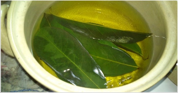 Try Boiling These Leaves and Lower Your Blood Pressure, Strengthen Your Blood Vessels and Treat Diabetes