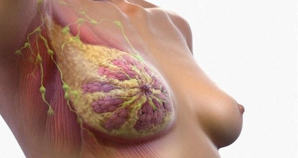 We Use It Every Day but We Don't Know It Can Cause Breast Cancer