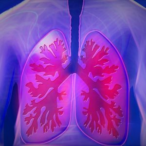 Two Lungs One Fight – Clean Them Immediately