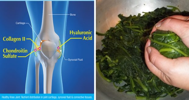 Magnesium: Mineral That Prevent Osteoporosis, High Blood Pressure and Heart Disease