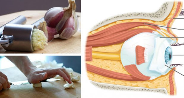 Improve Your Eyesight with Just a Pinch of Garlic