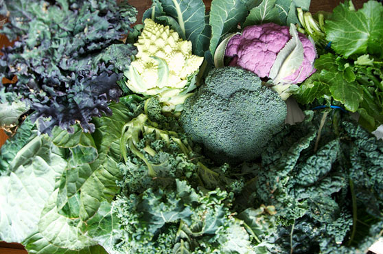 Alkaline Diet That Fights Cancer!