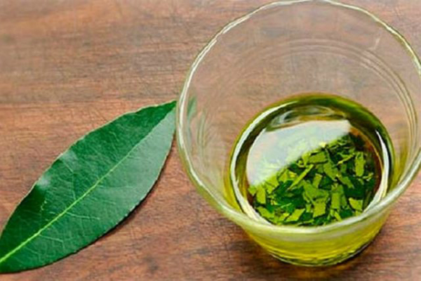 Eliminate High Blood Pressure, Sugar and Fat in Your Blood with This Magical Leaf