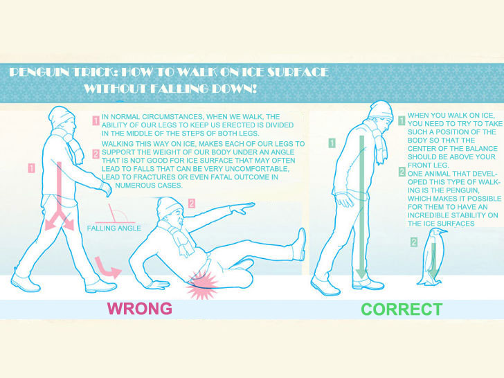 Penguin Trick: How To Walk On Ice Surface Without Falling Down!