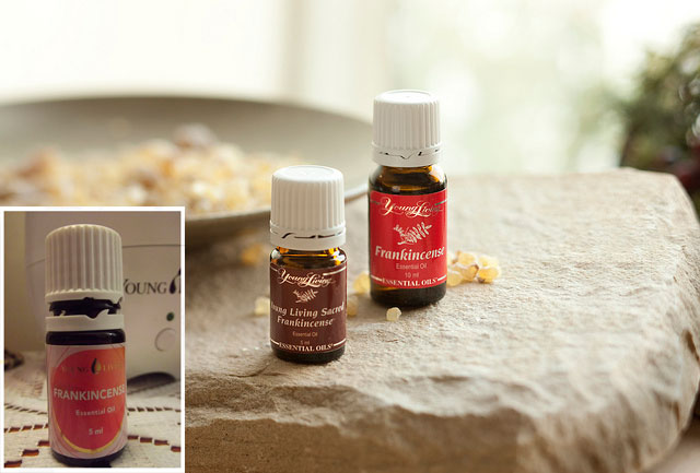 Did You Know About Frankincense Oil? Well, Apparently It Can Get Rid Of Cancer Cells!