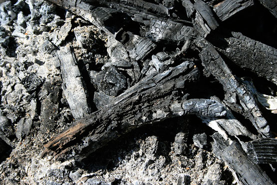How Burning Wood Ash Can Be Of Huge Help!