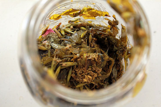 This Homemade Swedish Tincture Is Worth Millions, But You Can Prepare It For Much Less…