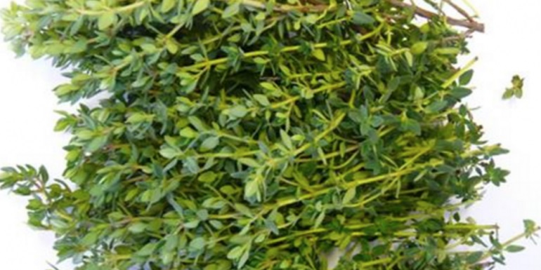 Use This Herb and Eliminate Arthritis, Flu Virus, Sore Throat and Diarrhea