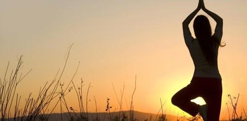 Why Is Yoga So Amazing?